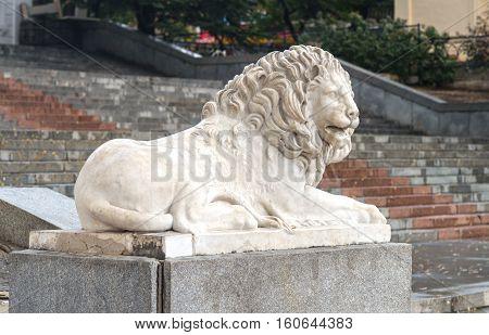 Sculpture of a lion in Sevastopol town