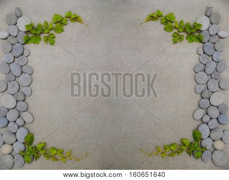 Set of Green leaves of ivy and stones on gray