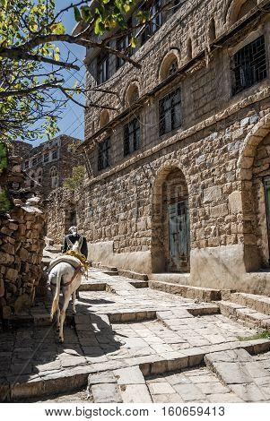 street in traditional old yemeni heritage shibam village near sanaa yemen