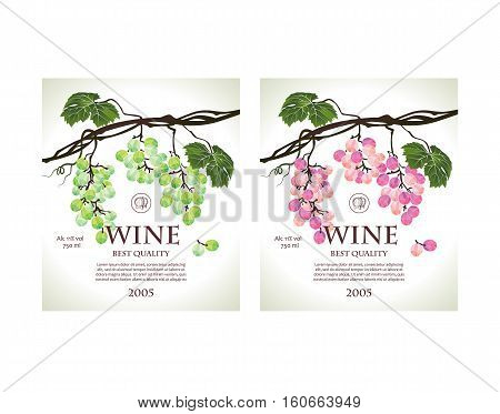 Set of conceptual labels for white and rose wine