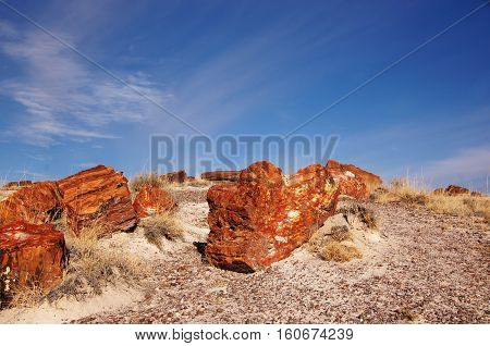 Petrified-forest-national-park, Arizona, Usa