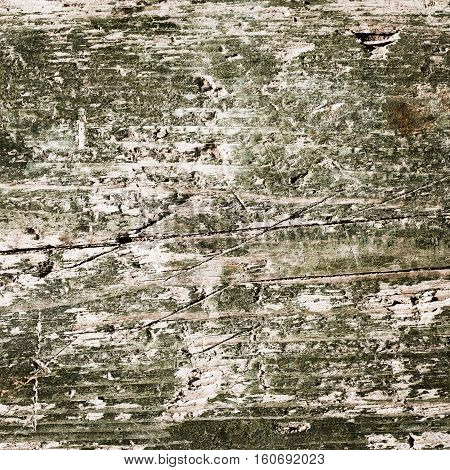 green wood texture background. closeup of old wood board