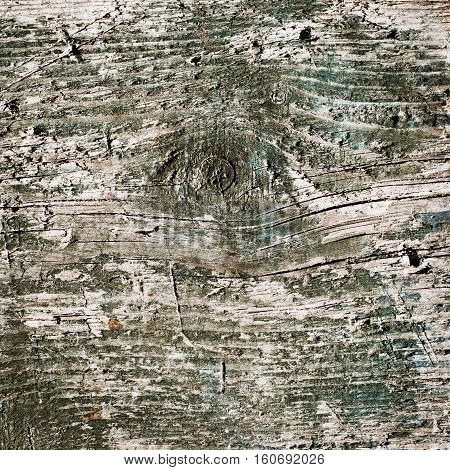 wood texture background. closeup of old wood planks painted with green color