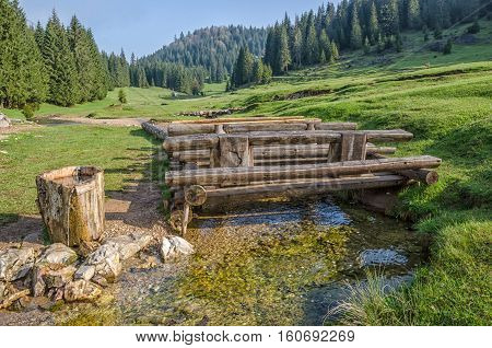 Landscape with forests. Nature in Europe. Sunset scenic. Green meadows. Apuseni Mountains in Romania. Natural background.