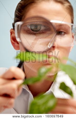 Young botanist examining plant with magnifying glass