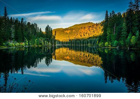 Sunset Reflection Toketee Lake Umpqua River Oregon