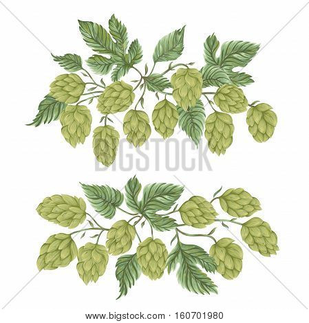 Bouquets with hops. Floral composition with hop cones, leaves and branches. Isolated elements. Vintage hand drawn illustration in watercolor style.