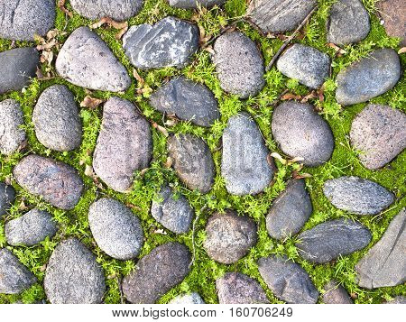 Cobble Stone Road Outdoor Background Texture nature