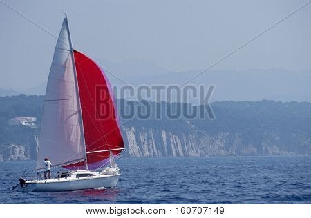 Sailboat And Red Spinnaker In Bandol, France
