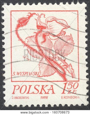 MOSCOW RUSSIA - CIRCA NOVEMBER 2016: a post stamp printed in POLAND shows a rose the series