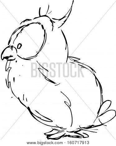 cute small owl - funny vector illustration profile