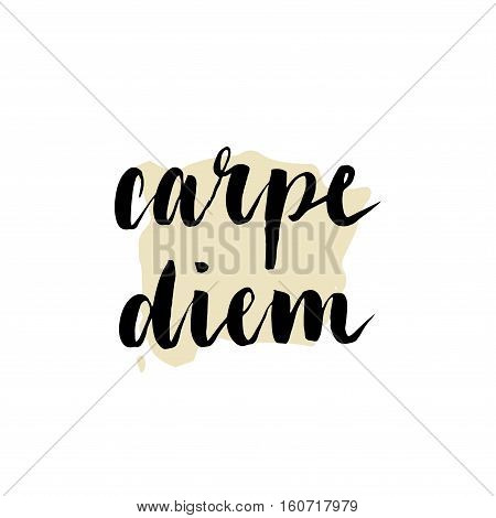 Hand Drawn Carpe Diem Sign. Modern Brush Calligraphy.