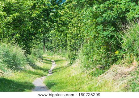 Hiking trail hollow path or alley in Heiligenhaus near Abtskuecher Teich Germany.