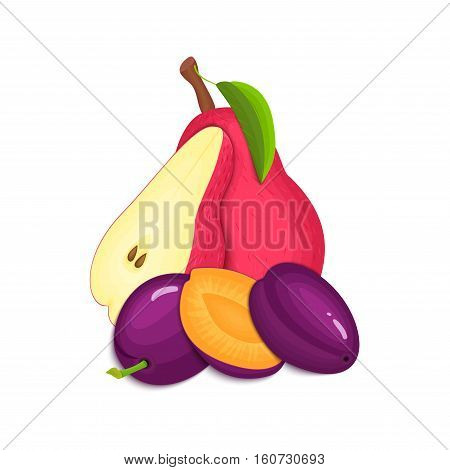 Composition of juicy plums and pears. Ripe vector pear and plum fruits whole and slice appetizing looking. Group of tasty fruits for design the packaging of juice, breakfast healthy eating vegan