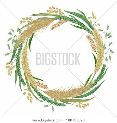 Wreath with cereals. Barley, wheat, rye, rice, millet and oat. Collection decorative floral design elements. Isolated elements. Vintage vector illustration in watercolor style.