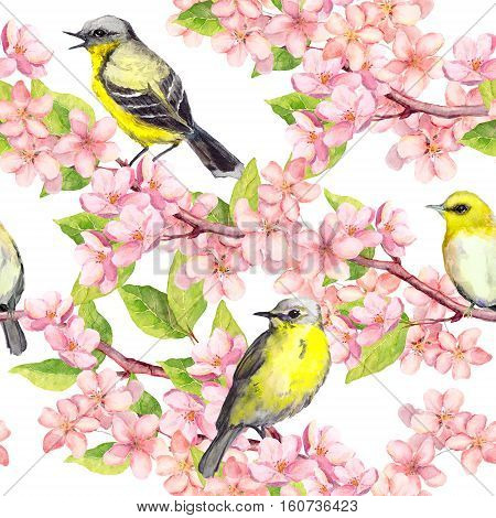 Spring flowers blossom and birds at branches with cherry, apple, sakura flowers. Floral seamless pattern. Watercolor