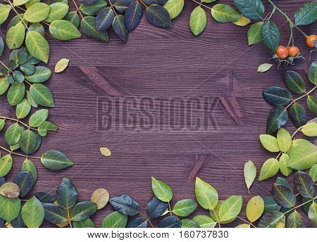 Wooden background with autumn leaves laid out on the perimeter the empty space in the middle