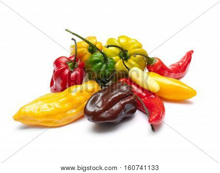Some of hottest chili pepper spices on a white background.