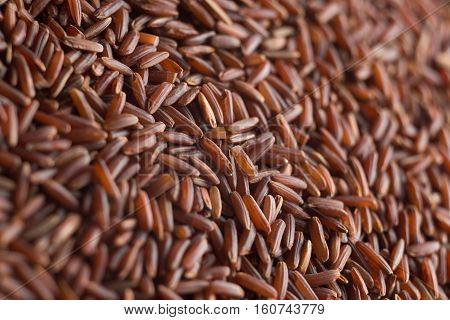 Red Rice, Grains Closeup. Bhutanese. Unpolished, Uncooked, Natural, Diet, Raw For Traditional Asian