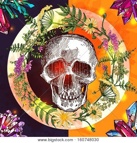 Illustration with human skull. Hand drawn vector background with wildflowers and crystall. Boho style drawing. Us for print for t-shirt smart phone poster web.