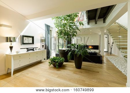 Spacious Staircase With Plants And Skylight