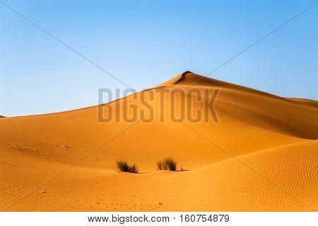 Sand dunes in the Sahara Desert Merzouga Morocco