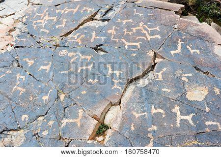 The petroglyphs of El Pintado on Quebrada de Humahuaca Argentina