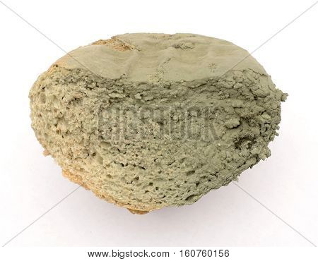 slice of bread covered with mold. spoiled bread on a white background