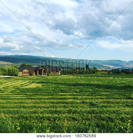 Big brown house behind lush plowed green farm field in summer with mountains, hills, blue sky, sunshine on hills and clouds in background.  Farm field landscape.Scenic field landscape.