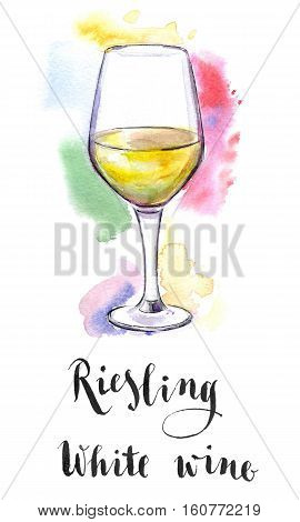 Wineglass of white wine Riesling hand drawn - watercolor Illustration