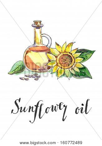 Bottle of sunflower oil sunflower and seeds hand drawn - watercolor Illustration