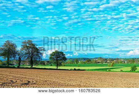 Landscape Of Brittany Of France