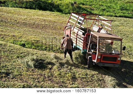 Worker doing agricultural work such as cutting the hay in the meadow in Zermatt Switzerland.