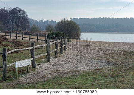 Sand and heathland at Frensham Great Pond in Surrey