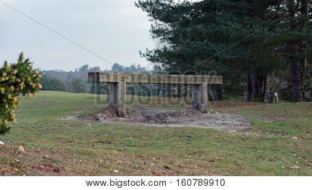 A wooden bench on Heathland at Frensham Common in Surrey