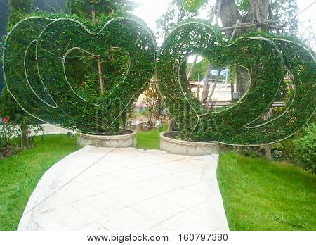 Adapted two hearts in a tree structure mild steel rods on large pots.