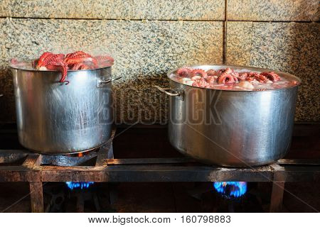 The octopus boiling inside a cauldron for cooking the galician style Octopus called pulpo estilo feira