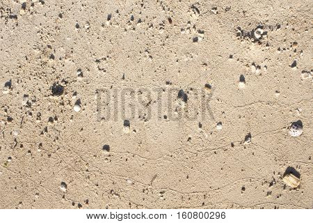 Sand texture closeup photo. Smooth beach sand background for travel banner template. Summer holiday card backdrop. Coral sand close-up. White sand with small beach pebbles. Sunny beach sand top view