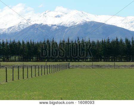 New Zealand Mountain And Farm