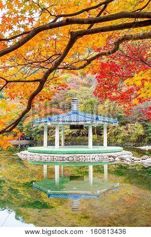 Naejangsan National Park in Autumn South Korea