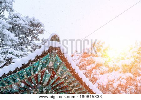 Landscape in Winter with Roof of gyeongbokgung and falling snow in SeoulSouth Korea.Sunset in winter