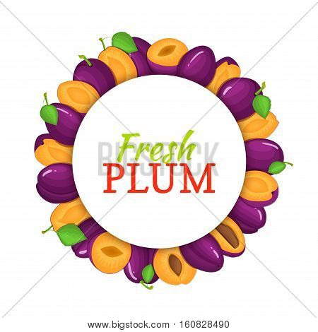 Round colored frame composed of delicious plum fruit. Vector card illustration. Circle plum frame. Purple fresh plums fruits appetizing looking for packaging design of juice, breakfast, healthy eating