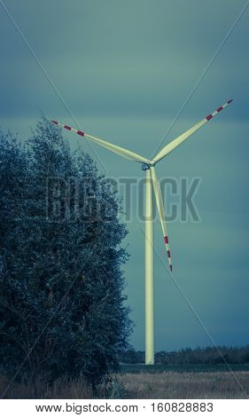 Windmills For Electric Power Production On The Field.