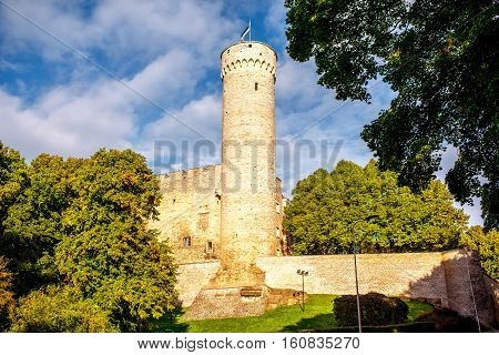 View on the famous fortification tower Hermann in the old town of Tallin, Estonia