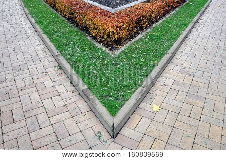 A fragment of urban beautification. The angle of the paving slabs green lawn and red shrubs.