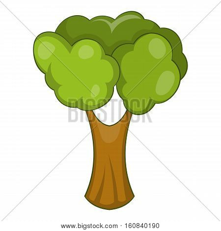 Fruit tree icon. Cartoon illustration of fruit tree vector icon for web