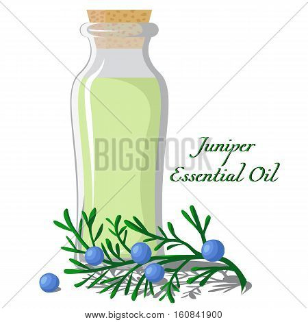 A bottle full of essential oils of juniper