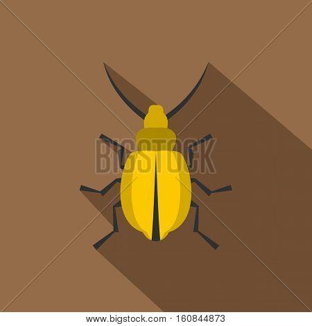 Yellow beetle icon. Flat illustration of yellow beetle vector icon for web