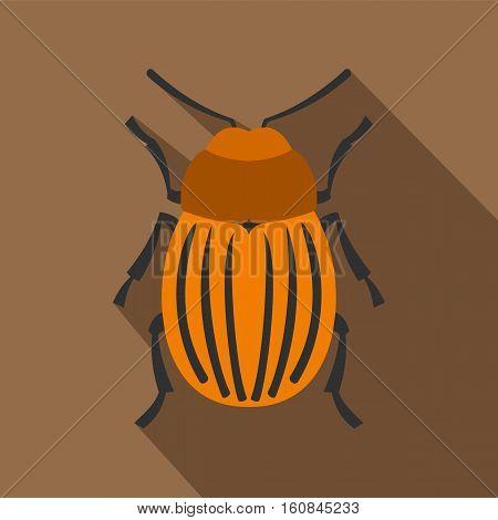 Colorado beetle icon. Flat illustration of colorado beetle vector icon for web