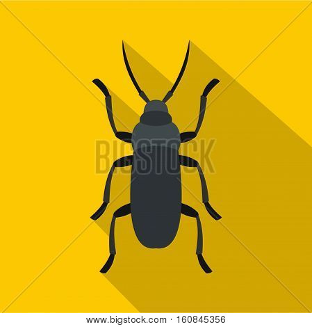 Gray bug icon. Flat illustration of gray bug vector icon for web